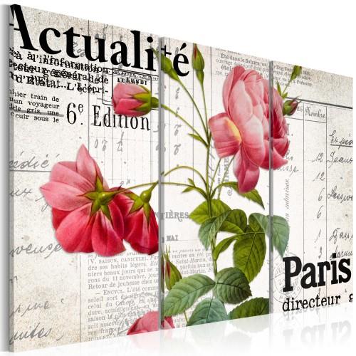 Quadro - Paris directeur - Quadri e decorazioni