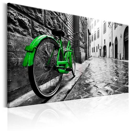 Quadro - Vintage Green Bike - Quadri e decorazioni