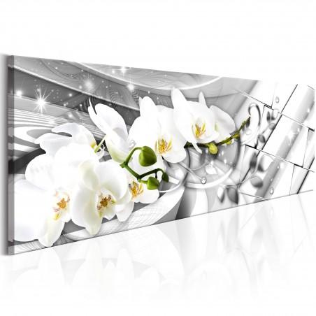 Quadro - Twisted Orchids - Quadri e decorazioni