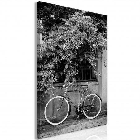 Quadro - Bicycle and Flowers (1 Part) Vertical - Quadri e decorazioni