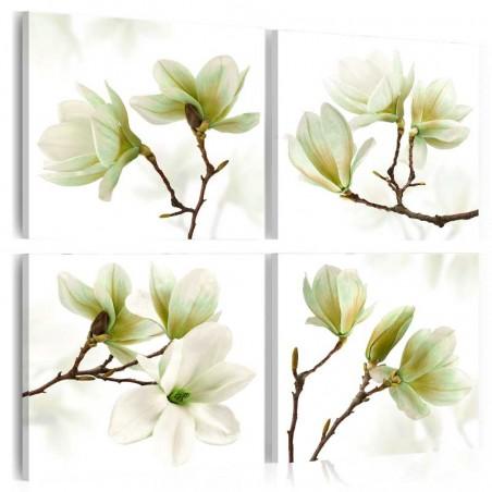 Quadro - Fascino della magnolia - Quadri e decorazioni