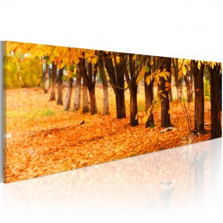 Quadro - Golden leaves - Quadri e decorazioni