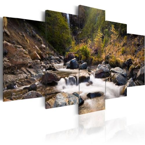 Quadro - Cascata tra la natura selvaggia - Quadri e decorazioni