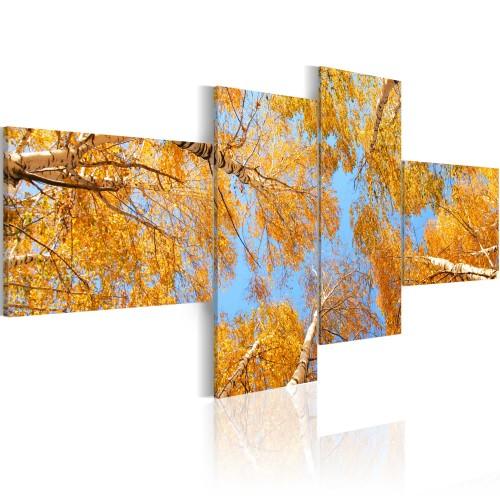 Quadro - L'autunno visto da uno gnomo - Quadri e decorazioni