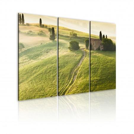 Quadro - Sole sulla Toscana - Quadri e decorazioni