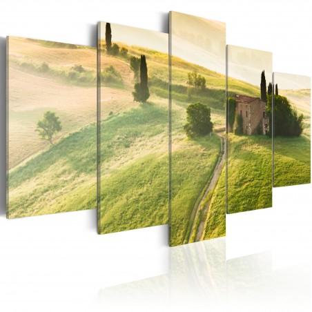 Quadro - Toscana verde - Quadri e decorazioni