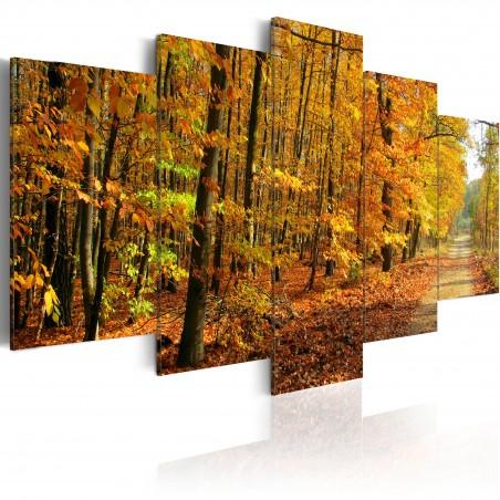 Quadro - Vialetto tra foglie colorate - Quadri e decorazioni