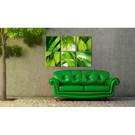 Quadro - Verde intenso delle foglie - Quadri e decorazioni