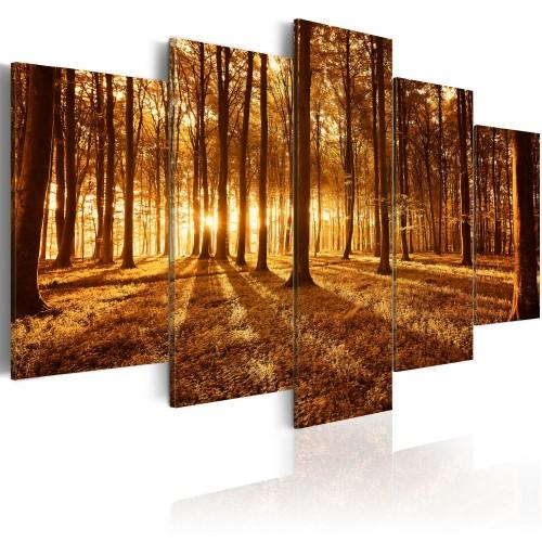 Quadro - Ambrata foresta - Quadri e decorazioni