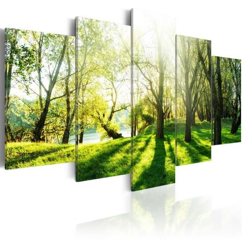 Quadro - La prateria verde - Quadri e decorazioni