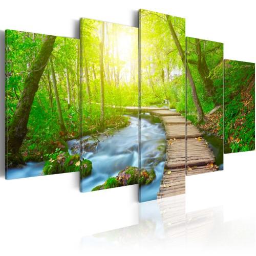 Quadro - Nella foresta soleggiata - Quadri e decorazioni