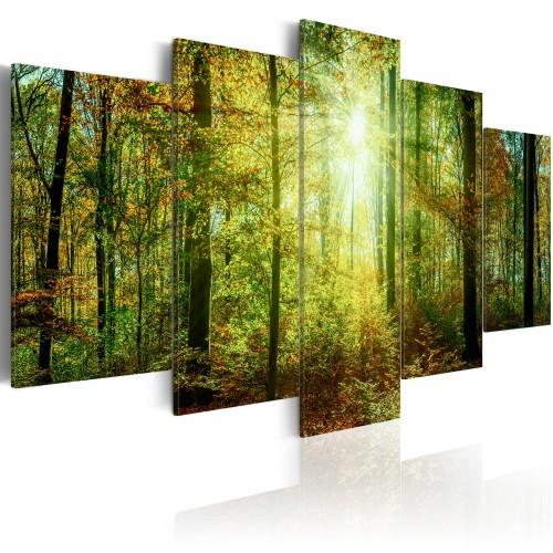 Quadro - Wild Forest - Quadri e decorazioni
