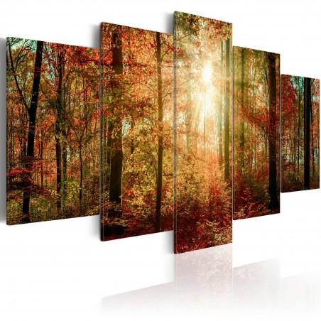 Quadro - Autumn Wilderness - Quadri e decorazioni