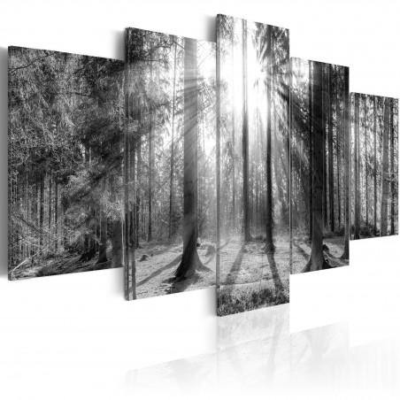 Quadro - Forest of Memories - Quadri e decorazioni