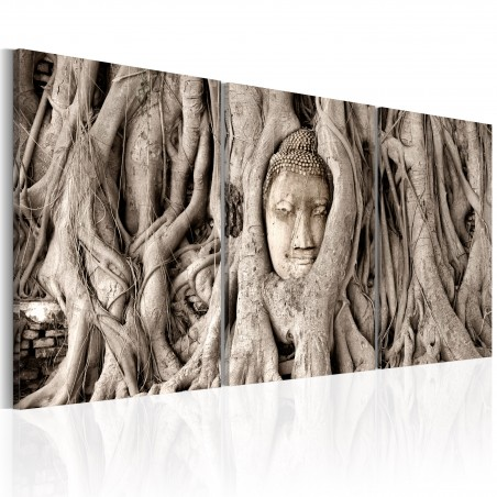 Quadro - Meditation's Tree - Quadri e decorazioni