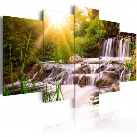 Quadro - Forest Waterfall - Quadri e decorazioni