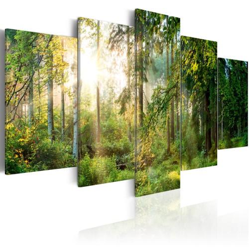 Quadro - Green Sanctuary - Quadri e decorazioni