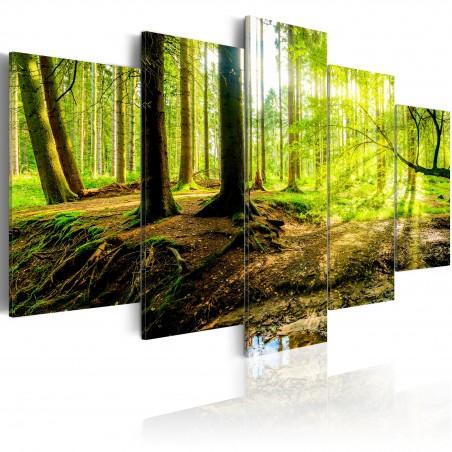 Quadro - Poetry of a Forest - Quadri e decorazioni