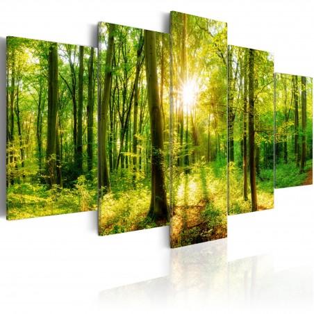 Quadro - Forest Tale - Quadri e decorazioni