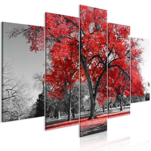 Quadro - Autumn in the Park (5 Parts) Wide Red - Quadri e decorazioni