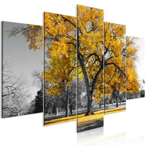 Quadro - Autumn in the Park (5 Parts) Wide Gold - Quadri e decorazioni