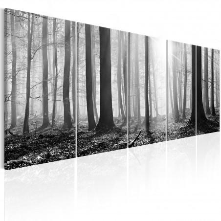 Quadro - Monochrome Forest - Quadri e decorazioni