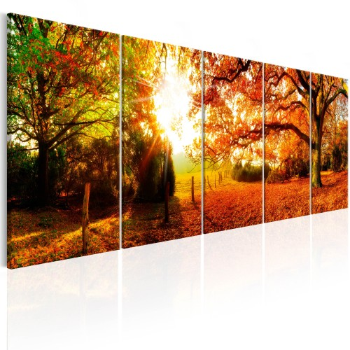 Quadro - Enchanting Autumn - Quadri e decorazioni