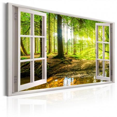 Quadro - Window: View on Forest - Quadri e decorazioni