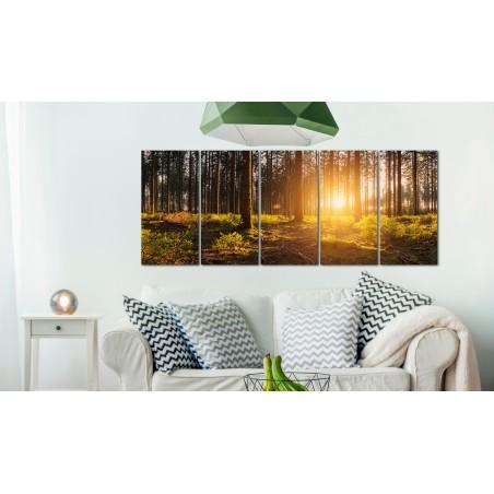 Quadro - Summer Morning - Quadri e decorazioni
