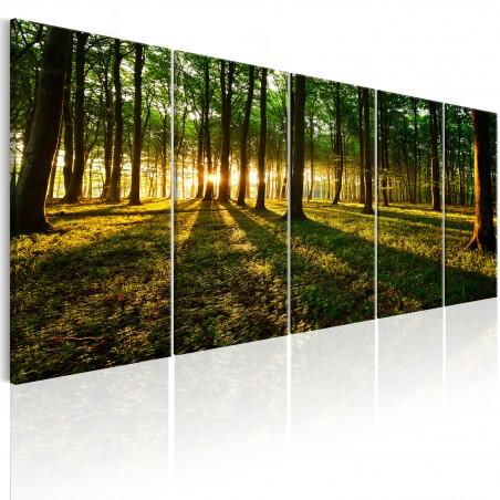Quadro - Shade of Trees I - Quadri e decorazioni