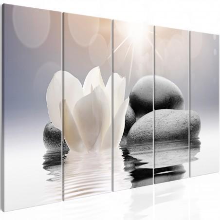 Quadro - Pebbles in Water (5 Parts) Narrow - Quadri e decorazioni