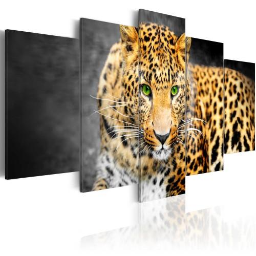 Quadro - Leopardo con occhi verdi - Quadri e decorazioni