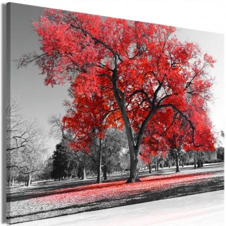 Quadro - Autumn in the Park (1 Part) Wide Red - Quadri e decorazioni