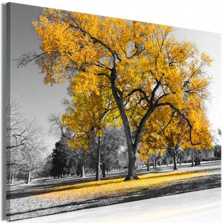 Quadro - Autumn in the Park (1 Part) Wide Gold - Quadri e decorazioni