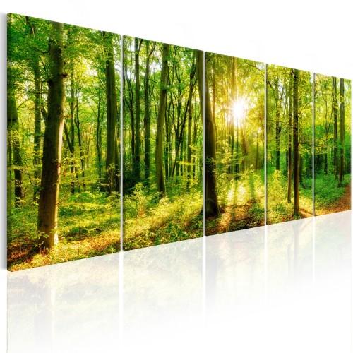 Quadro - Magic Forest - Quadri e decorazioni