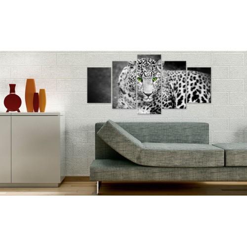 Quadro - Leopardo - bianco e nero - Quadri e decorazioni