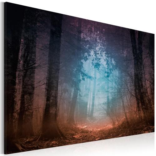 Quadro - Edge of the forest - Quadri e decorazioni