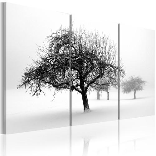 Quadro - Alberi coperti di neve - Quadri e decorazioni