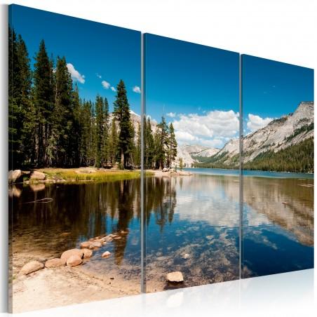 Quadro - Montagne, alberi e lago puro come il cristallo - Quadri e decorazioni