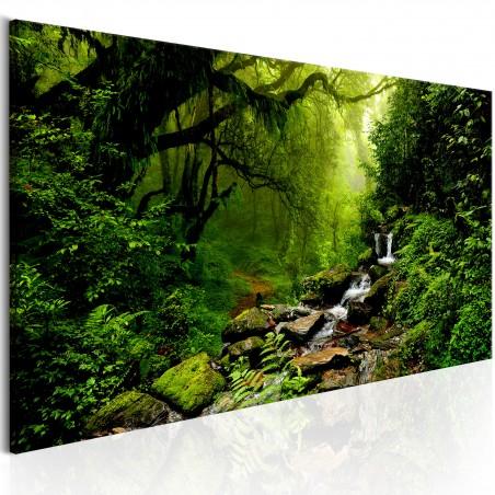 Quadro - The Fairytale Forest - Quadri e decorazioni