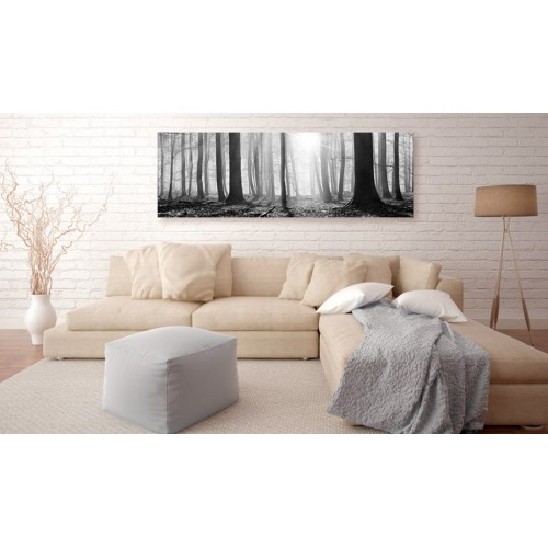 Quadro - Black and White Forest - Quadri e decorazioni