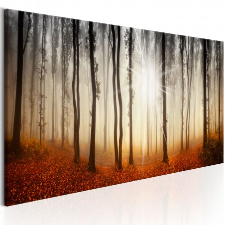 Quadro - Autumnal Fog - Quadri e decorazioni
