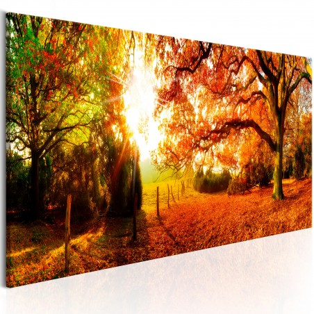 Quadro - Magic of Autumn - Quadri e decorazioni