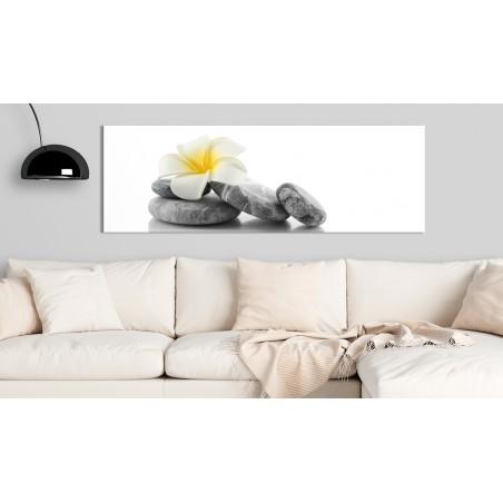 Quadro - White Lotus - Quadri e decorazioni