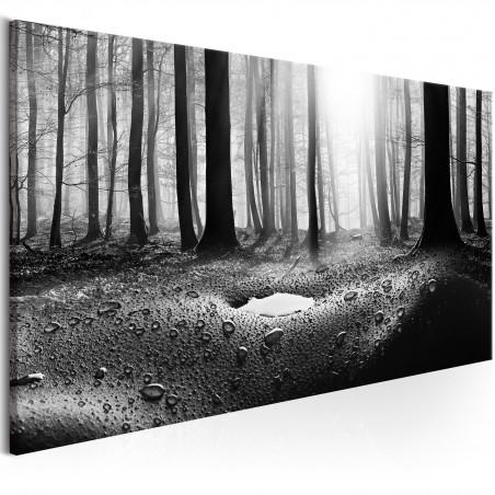 Quadro - Forest after Rain (1 Part) Narrow - Quadri e decorazioni