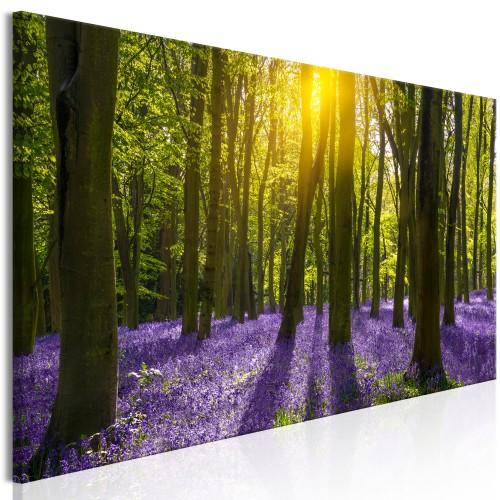 Quadro - Hyacinth Field (1 Part) Narrow - Quadri e decorazioni
