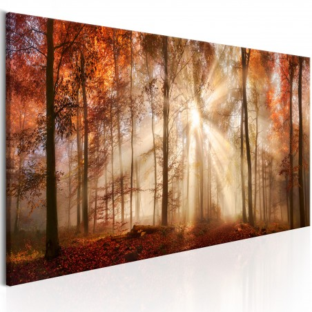 Quadro - Autumnal Dawn - Quadri e decorazioni