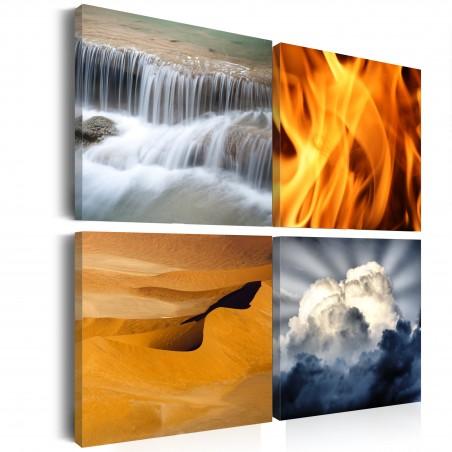 Quadro - Varieta' della natura - Quadri e decorazioni