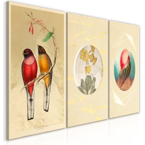 Quadro - Forms in Nature (3 Parts) - Quadri e decorazioni