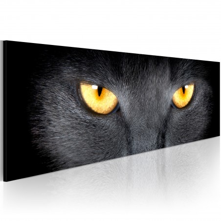 Quadro - Look into my eyes... - Quadri e decorazioni